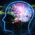 機器人有腦嗎?