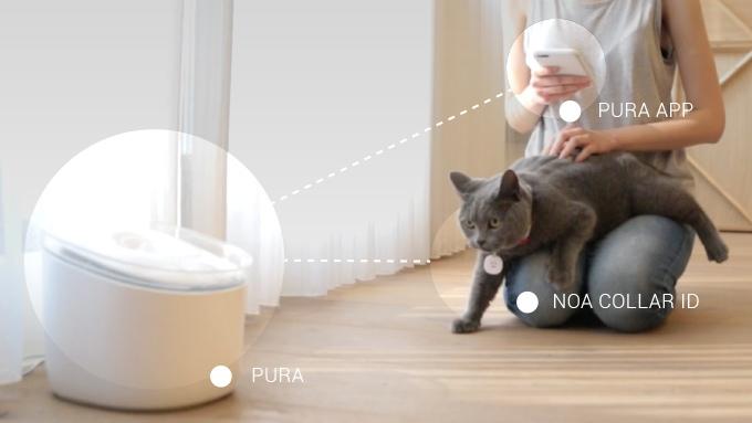 Pura具備了人工智慧、感測器、機器人技術等多項技術,能夠精準計算出每隻貓咪每次的飲水量。
