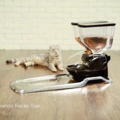 【也評CatFi】硬體真是牢不可破的門檻嗎?