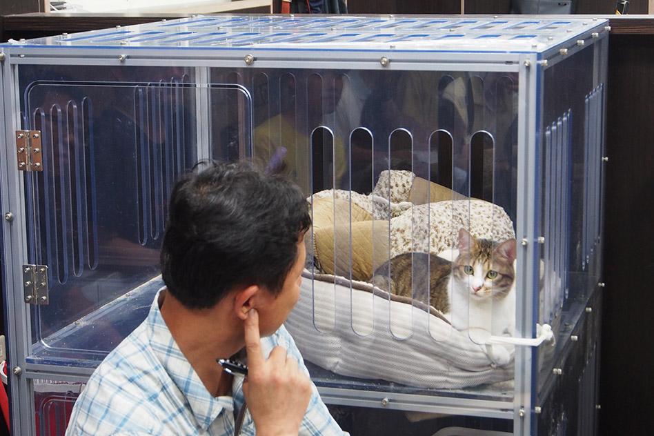 用新勝CNC為這隻大貓打造的大貓屋。