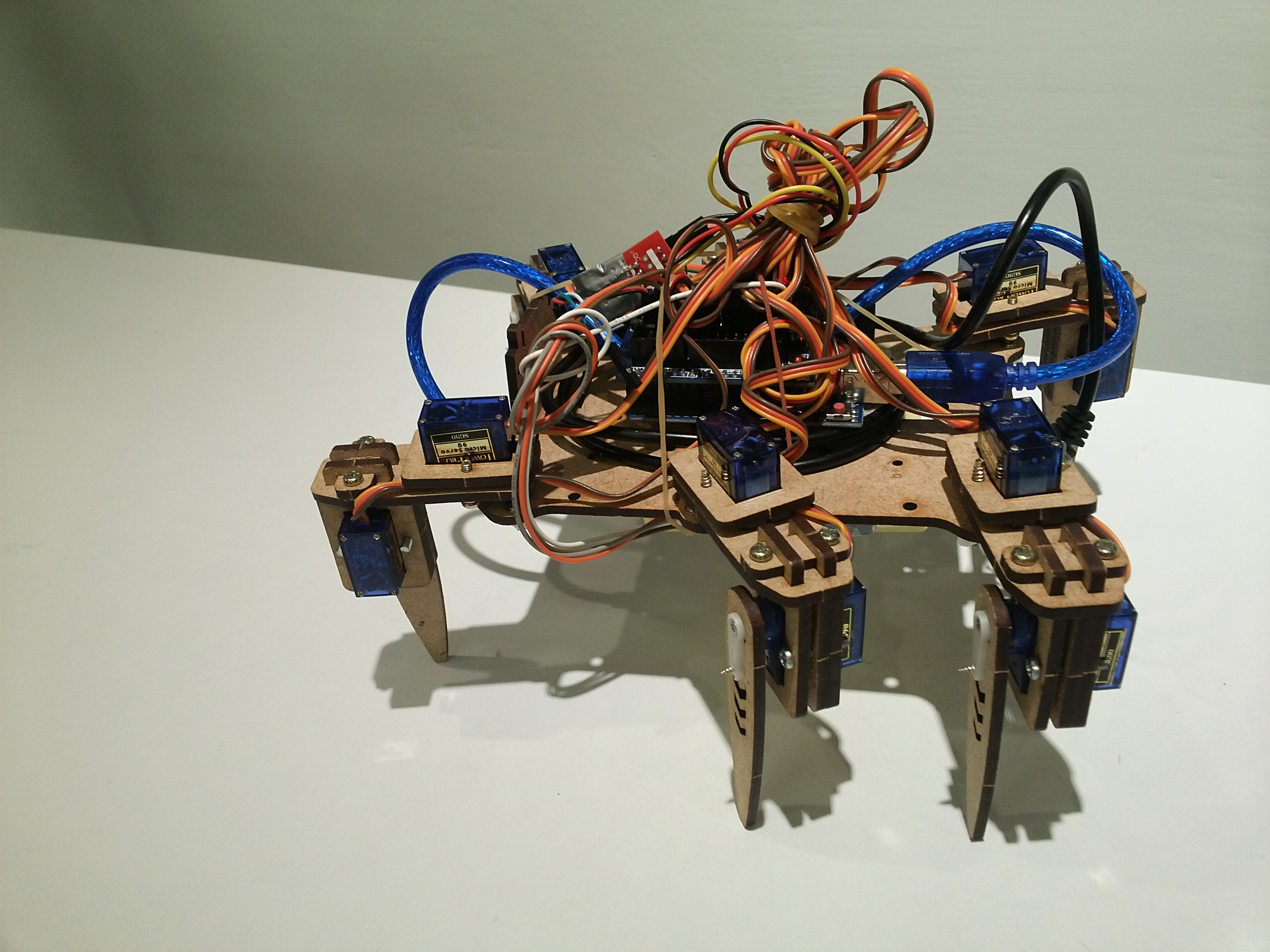 Bridan帶至現場的蜘蛛機器人