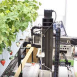 【開源農業】採收機器人之視覺技術現況