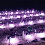 【自主群飛不是夢】Taiwan Drone 100讓台灣夜空美不勝收