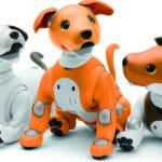 寵物型機器人,陪伴你我的生活 - Aibo & PARO