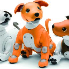 【機器人專題】寵物型機器人 圖片1