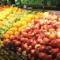 【AI解題案例】如何挑水果?自動辨識水果甜度方案