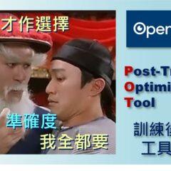 OpenVINO_POT_Fig_0