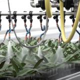 【氣候變遷】農業問題如何用科技助力解決?