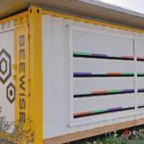 用科技拯救消失的蜜蜂:太陽能箱、3DP人工蜂巢
